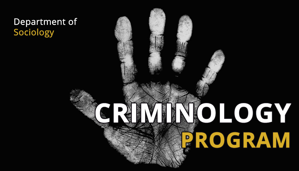 what is a criminology theory