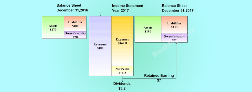 Balance Sheet and Income Statement Assignment Help