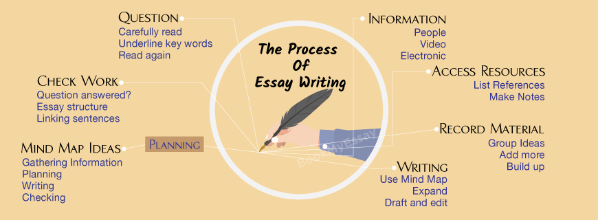 Essay Proofreading Writing Help