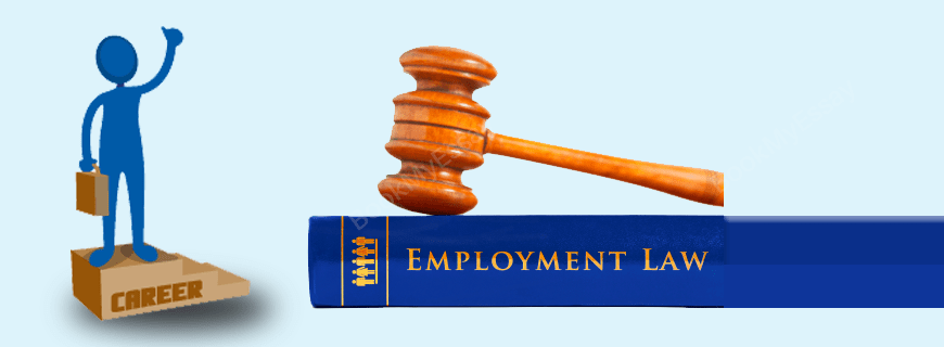 Employment Law Assignment Help