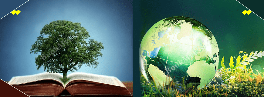 Environmental Assignment Help