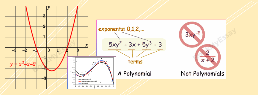 Polynomial Assignments Help