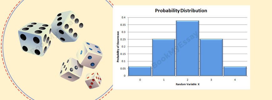 Probability Distribution Assignment Help