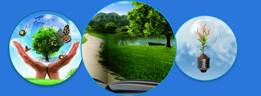 Environmental Management Assignment Help