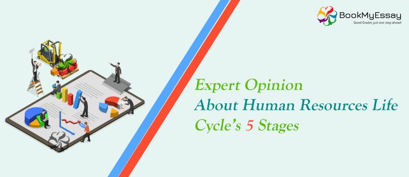 Human resources task 3 essay | Coursework Sample