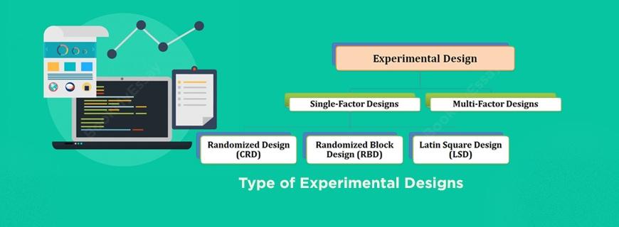 Experimental Design Assignment Help