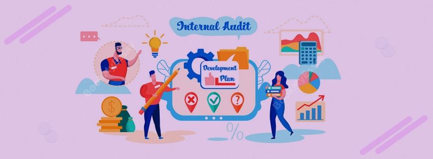 Internal Auditing Assignment Help
