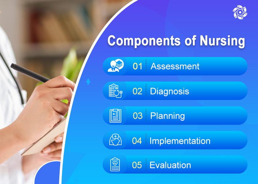 Nursing Assignment Writing Help Service