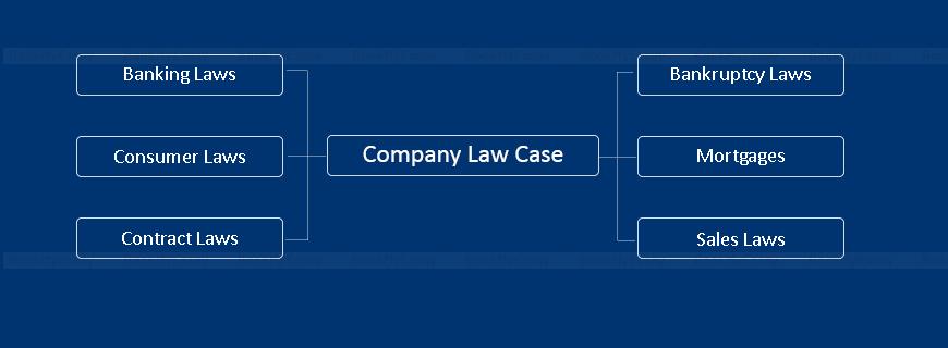 Company Law Case Study Help
